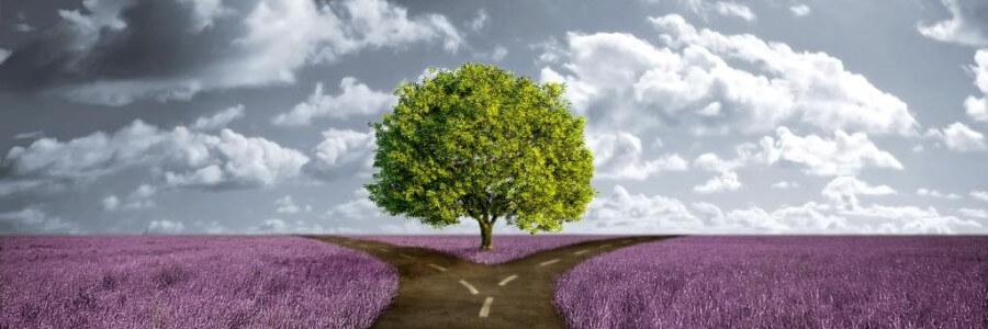 Устранение ментальных барьеров на пути к успеху